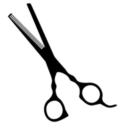 Hair scissor vector image