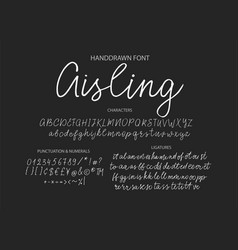 modern calligraphic font brush painted letters vector image