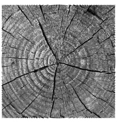 Natural of engraving saw cut tree trunk abstract vector
