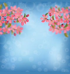 Pink blossoming cherry branches with bokeh effect vector