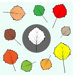 Poplar coloured leaves icons set Leaf sign icon vector