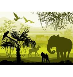 nature with wild animals elephant monkey antelope vector image
