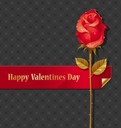 valentines design with rose vector image vector image