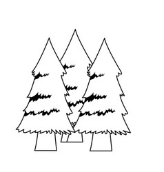 Forest pine trees foliage natural trunk icon vector