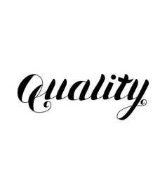 quality - hand drawn lettering isolated vector image vector image