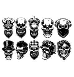 set of different skulls vector image vector image