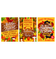 Autumn festival of harvest poster with fall leaves vector