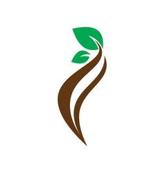 circle leaf nature ornament logo vector image