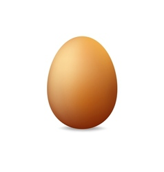 Egg on a white background vector image