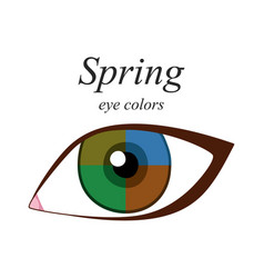 Eye colors for spring type vector