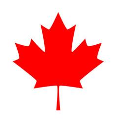 Maple leaf icon canada symbol leaf isolated vector