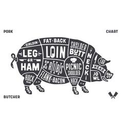 pork pig scheme diagram chart pork butcher vector image