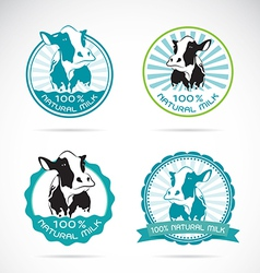 Set of an dairy cows label vector image
