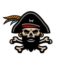 skull captain pirates and crossed bones vector image