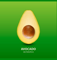 3d realistic half avocado with seed closeup vector