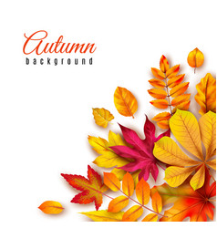 Autumn leaves background autumnal border vector
