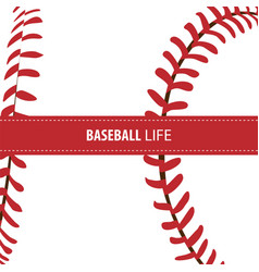 bright baseball background vector image