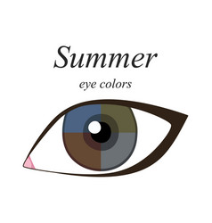 Eye colors for summer type vector