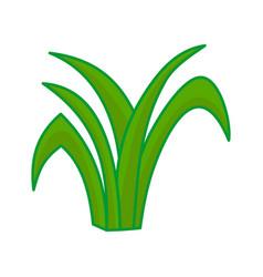 Grass leaves cartoon design graphic vector