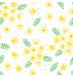 watercolor hand draw yellow plumeria or vector image