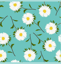 white aster daisy on green teal background vector image