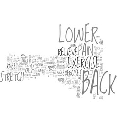 back exercise lower pain relieve techniques text vector image vector image