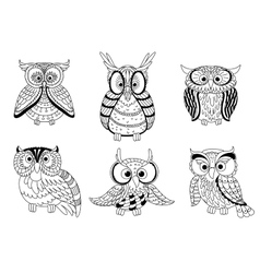 Cartoon cute outline owls and owlets birds vector