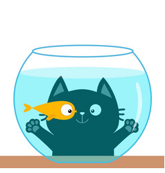 cat looking through aquarium glass playing with vector image