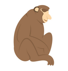 Orangutan monkey icon isolated vector