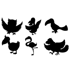 Silhouettes of the different kinds of birds vector image