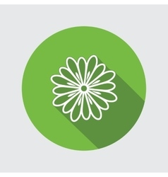 Spring flower Camomile dog-daisy icons Floral vector