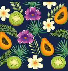 tropical garden with kiwi and papaya vector image