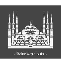 The Blue Mosque Istanbul vector image