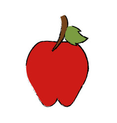 drawing sweet red apple vitamin nature vector image