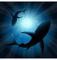Sharks under water vector image vector image