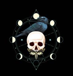 Black raven on skull vector