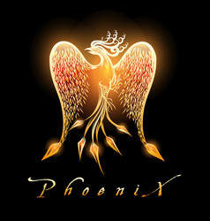burning phoenix bird on black background vector image