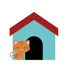 Cat feline curious small colored house vector