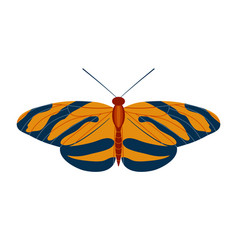 Colorful tropical butterfly moth icon in cartoon vector