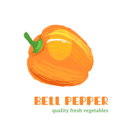Fresh bell pepper isolated on white background vector
