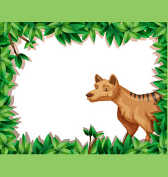 hyena in nature frame vector image