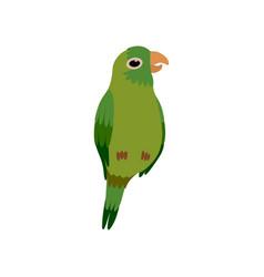 little parrot bird cute green budgie home pet vector image