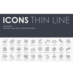 Organisms Thin Line Icons vector image