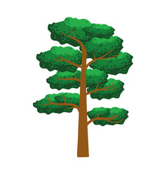pine tree element of a landscape colorful vector image