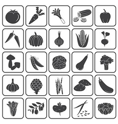 Basic Vegetables Icons Collection vector image vector image