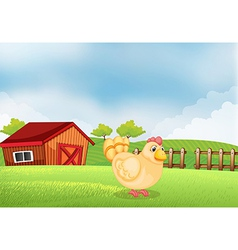 A hen in the farm with a wooden house at the back vector