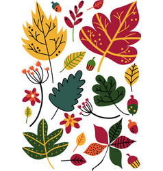 Colorful autumn leaves and acorns floral seamless vector