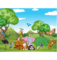 Forest scene with many wild animals vector image