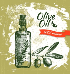 Hand drawn olive vintage background vector image