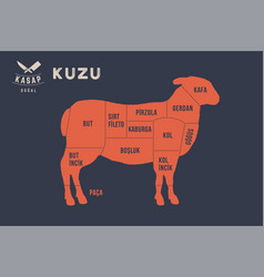 meat cuts poster butcher diagram - kuzu vector image
